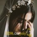 أنا أمال من قطر 30 سنة عازب(ة) و أبحث عن رجال ل الزواج