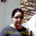 أنا حبيبة من فلسطين 42 سنة مطلق(ة) و أبحث عن رجال ل الحب