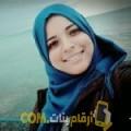 أنا شيمة من فلسطين 25 سنة عازب(ة) و أبحث عن رجال ل الدردشة