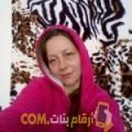 أنا مجيدة من مصر 40 سنة مطلق(ة) و أبحث عن رجال ل الحب