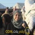 أنا حلى من تونس 33 سنة مطلق(ة) و أبحث عن رجال ل الدردشة